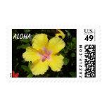 Yellow Hibiscus Stamp