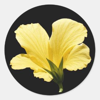 Yellow Hibiscus ~ sticker