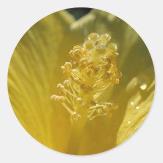 Yellow Hibiscus Stickers