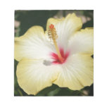 Yellow Hibiscus With Garden Background Memo Pads