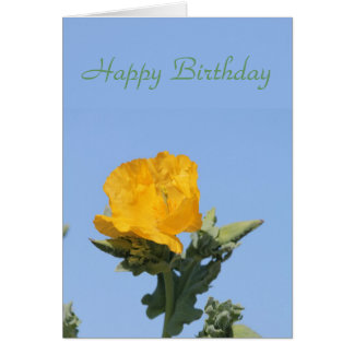 Yellow horned-poppy card