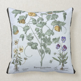 Yellow Horned Poppy, from the 'Hortus Eystettensis Throw Pillow