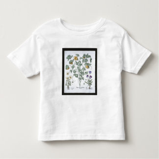 Yellow Horned Poppy, from the 'Hortus Eystettensis Toddler T-shirt