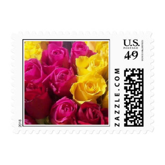 Yellow & Hot Pink Roses Postage