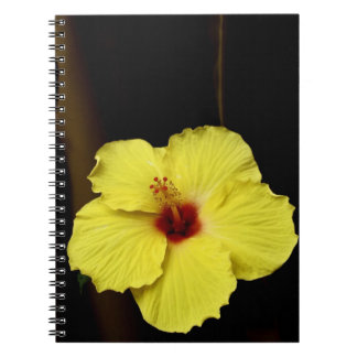 Yellow huge gorgeous hibiscus Chinese rose flower Spiral Notebook