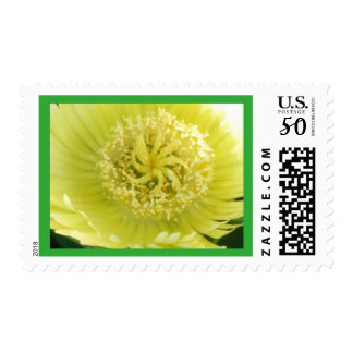 Yellow Ice Plant Flower stamp