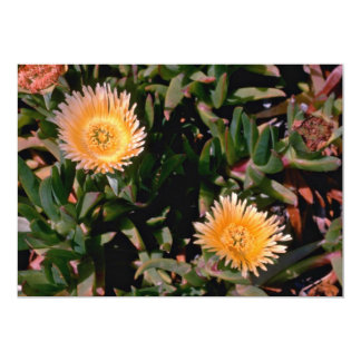 Yellow Ice Plant flowers Personalized Announcement