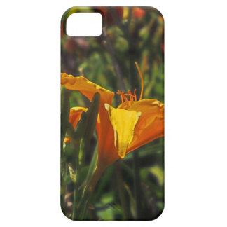 Yellow Illumination iPhone 5 Case