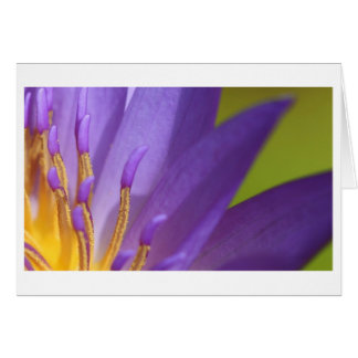 Yellow Inside Purple 4 Card