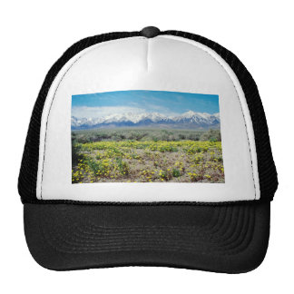 yellow Inyo County - Wildflowers and the Sierras f Hats