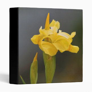 Yellow Iris Binder