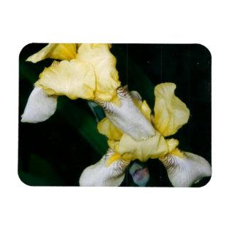 Yellow Iris Flexible Magnet