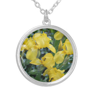 Yellow Iris Flower Round Silver Plated Necklace