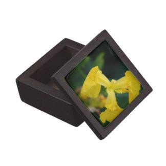 Yellow Iris Flowers Premium Gift Box