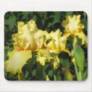 Yellow Iris Mouse Pad