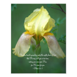 Yellow Iris Scripture Verse Photographic Print
