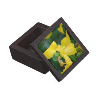 Yellow Iris Small Gift Box Premium Gift Boxes