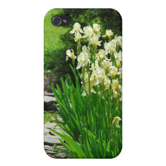 Yellow Irises Covers For iPhone 4