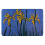 Yellow Irises Magnets