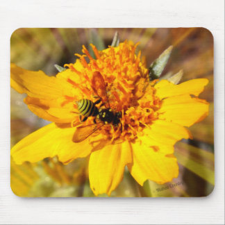 Yellow Jacket on Yellow Flower Mouse Pad