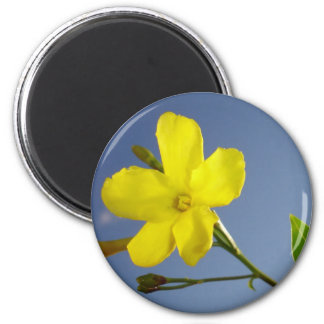 Yellow Jasmine Flower and Bud Against Blue Sky Magnet