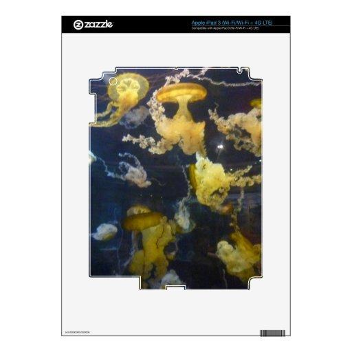 YELLOW JELLYFISH  AQUATIC SEALIFE LAS VEGAS AQUARI iPad 3 SKINS