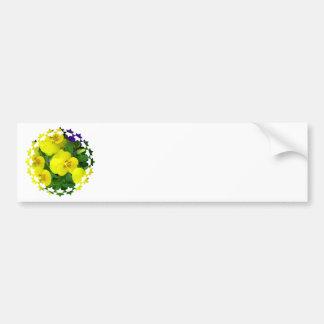 Yellow Johnny Jump Up Flowers Bumper Sticker