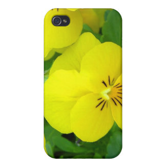 Yellow Johnny Jump Ups iPhone 4 Case