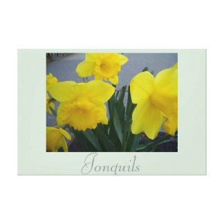 Yellow Jonquil Flower Art Nature Photography 2 Canvas Print