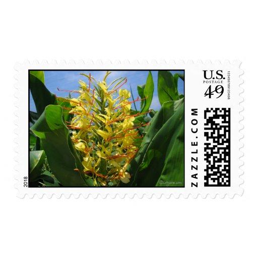 Yellow Kahili Ginger Wedding Mailing Stamps