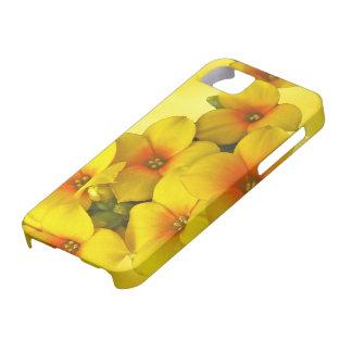 Yellow Kalanchoe - Succulent Sunshine iPhone SE/5/5s Case