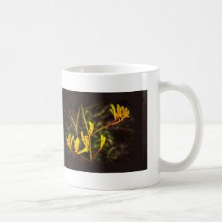 Yellow Kangaroo Paw flower Coffee Mugs