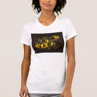 Yellow Kangaroo Paw flower Tee Shirt