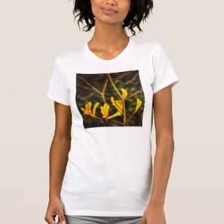 yellow kangaroo paw flower t shirt