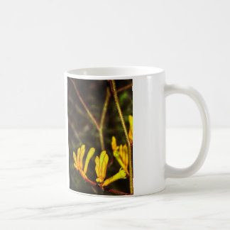 Yellow Kangaroo Paw Coffee Mugs