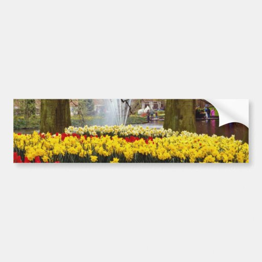 yellow Keukenhof gardens, Amsterdam, Netherlands f Car Bumper Sticker