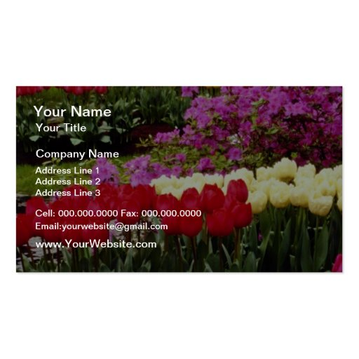 yellow Keukenhof gardens, Amsterdam, Netherlands f Double-Sided Standard Business Cards (Pack Of 100)