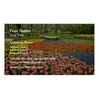 yellow Keukenhof Gardens near Haarlem, Netherlands Business Cards