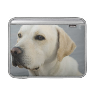 "Yellow Lab 13"" MacBook Sleeve"