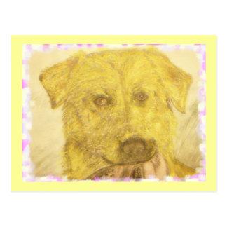 yellow lab art postcard