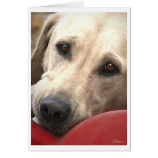 Yellow Lab Stationery Note Card