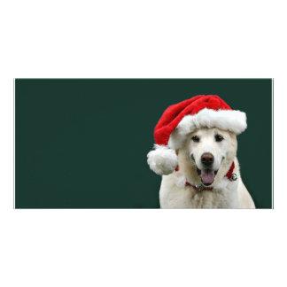 Yellow Lab Christmas Card