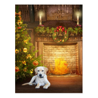 Yellow lab Christmas Postcard