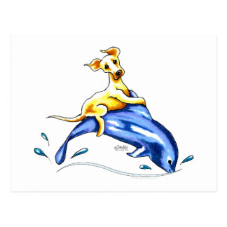 Yellow Lab Dolphin Ride Post Cards