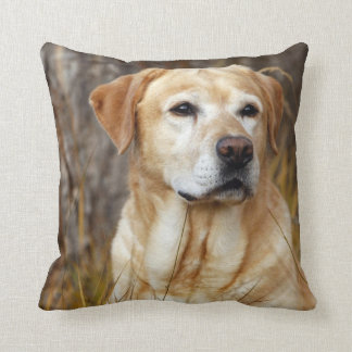 Yellow Lab in Field Throw Pillow