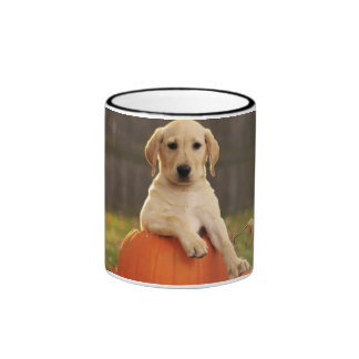 Yellow Lab in the Fall Ringer Mug