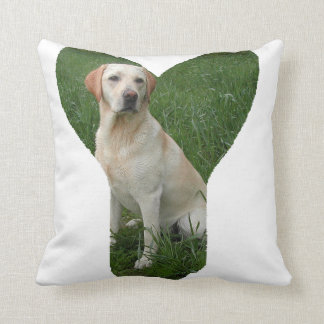 yellow lab in y pillow