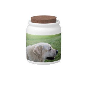 Yellow Lab/Labrador Retriever Cookie/Candy Jar