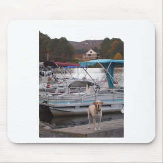 Yellow Lab on dock Mouse Pads