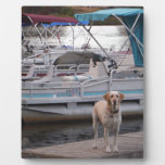Yellow Lab on dock Plaque